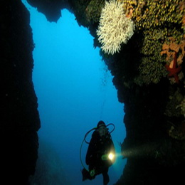 Full day diving excursion